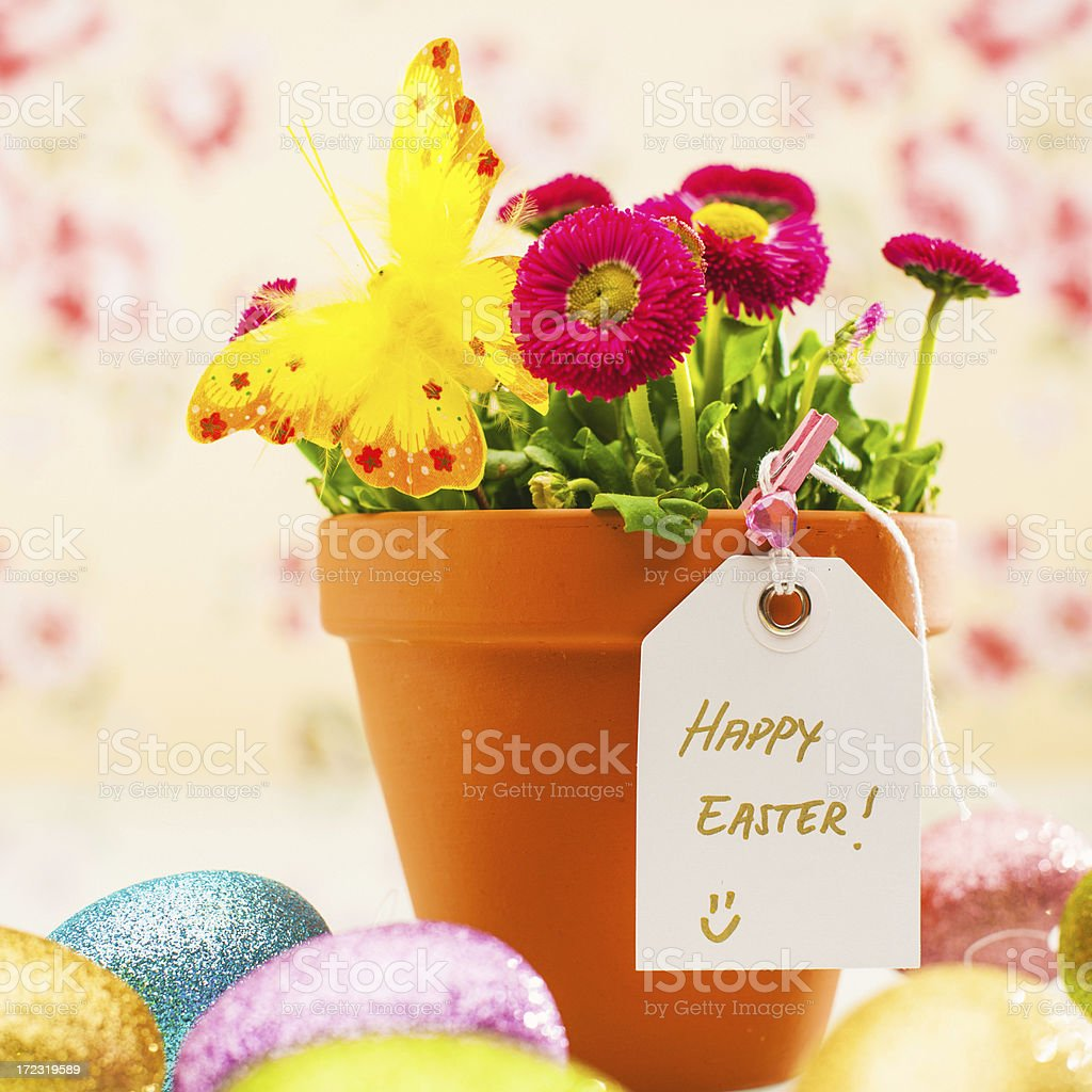 Easter flowers royalty-free stock photo