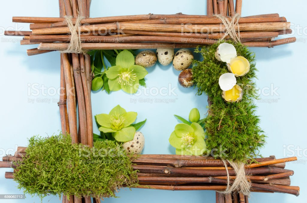Easter frame with two raw and five boiled quail eggs stock photo