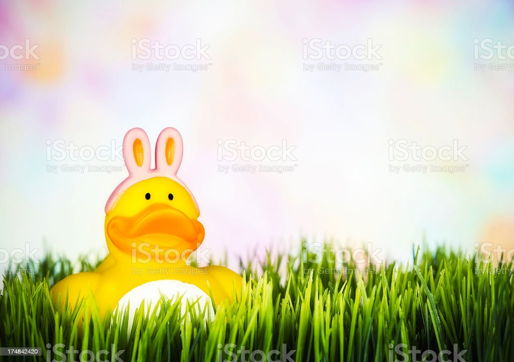Easter Girl Ducky in Grass royalty-free stock photo