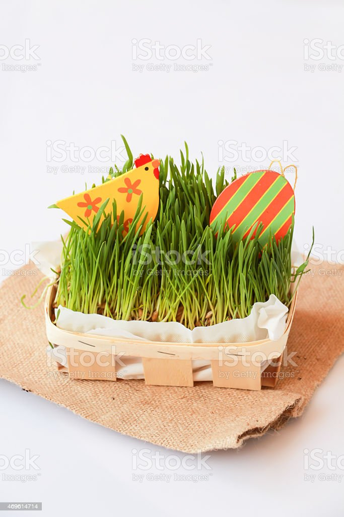 Easter holiday decoration с курицей, яйца и Трава Стоковые фото Стоковая фотография
