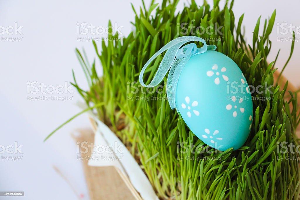 Easter holiday decoration с яиц и Трава Стоковые фото Стоковая фотография