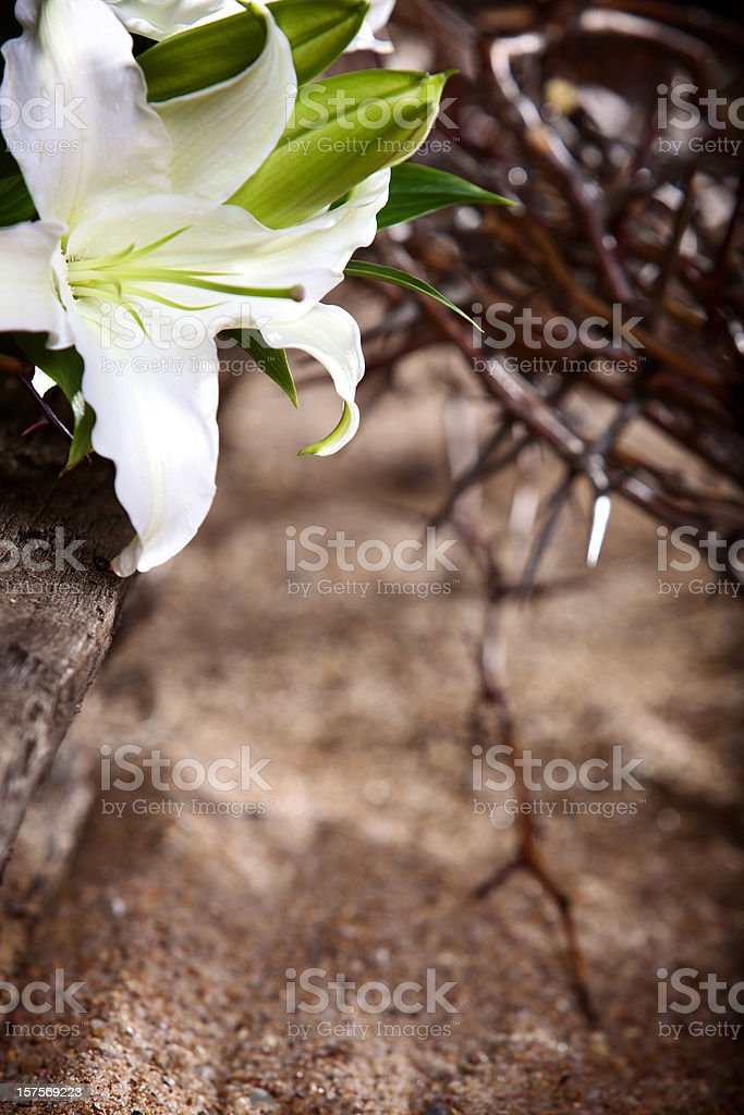 Easter Holiday passion lily royalty-free stock photo