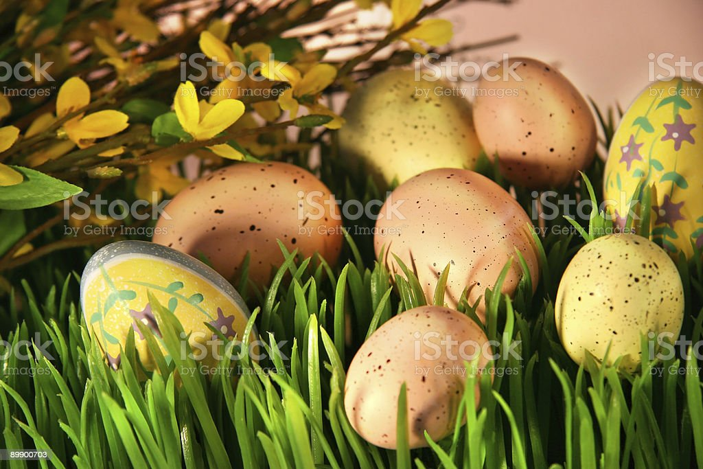 Easter hunt stock photo