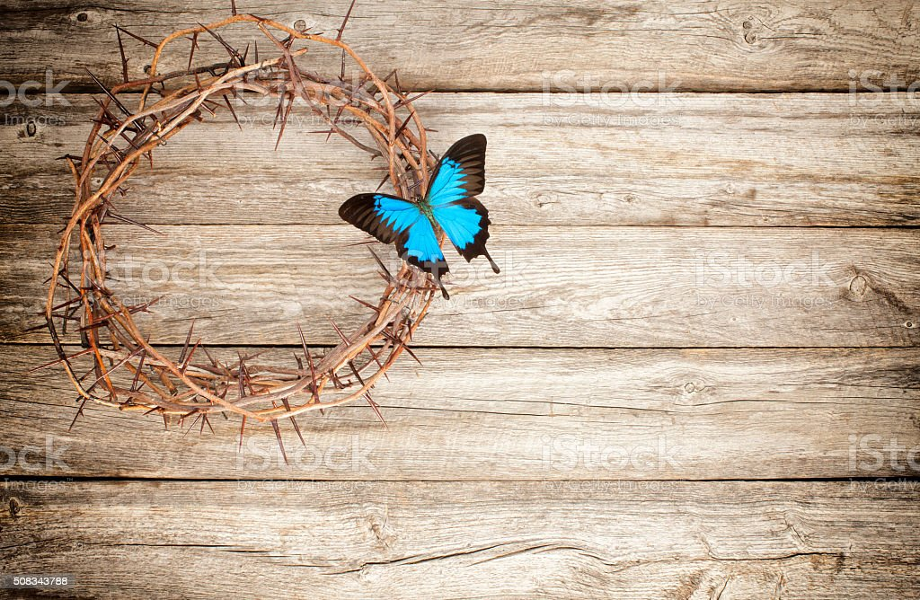 Easter Jesus crucifixion crown of thorns butterfly old wood stock photo