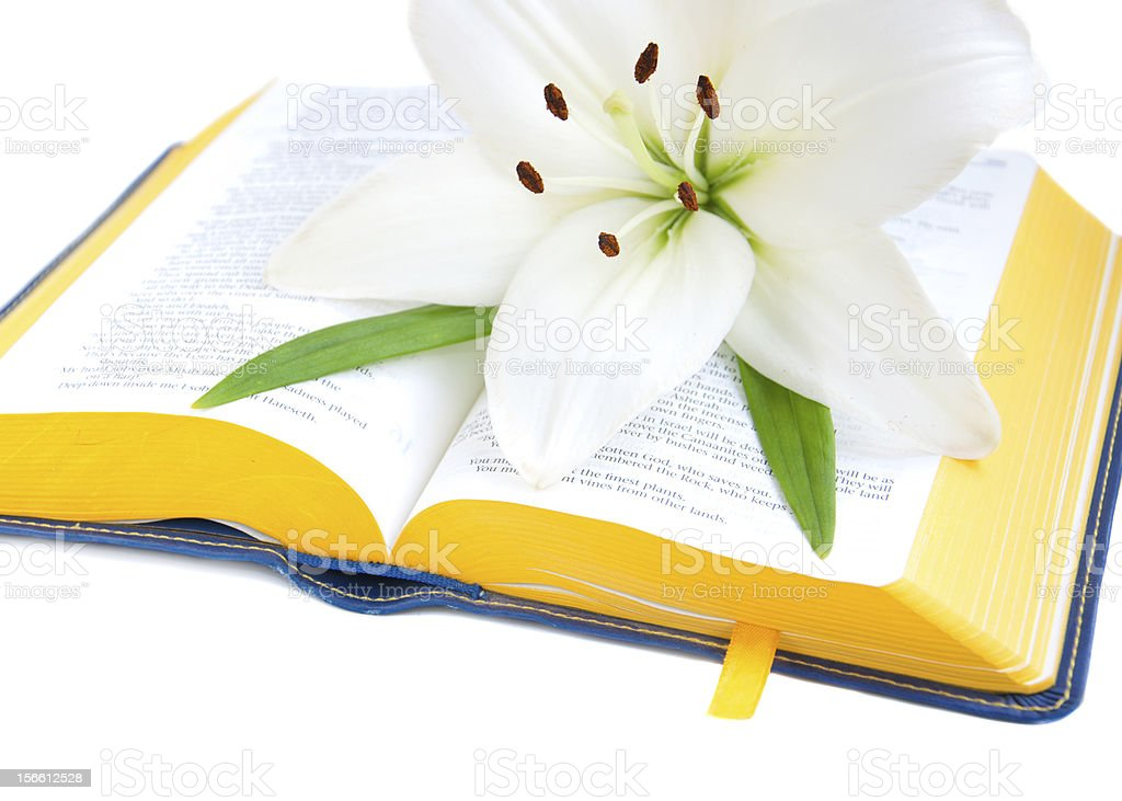 Easter Lily and Bible royalty-free stock photo