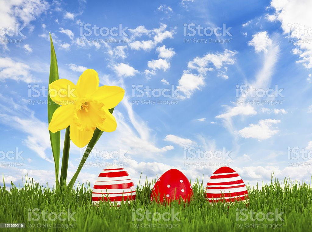 Easter meadow royalty-free stock photo