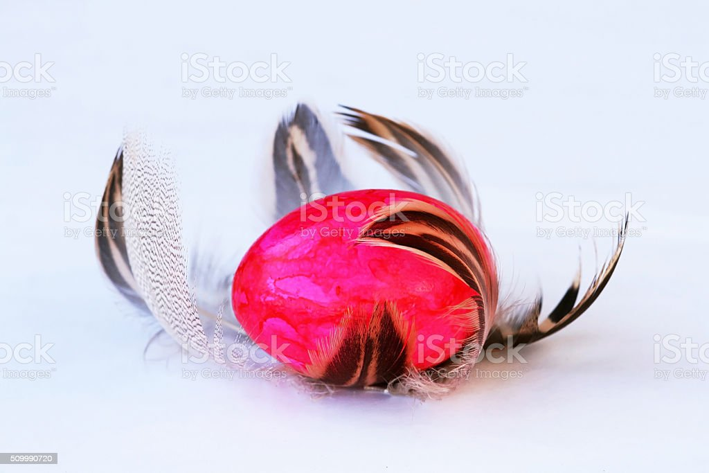 Easter nest of feathers stock photo