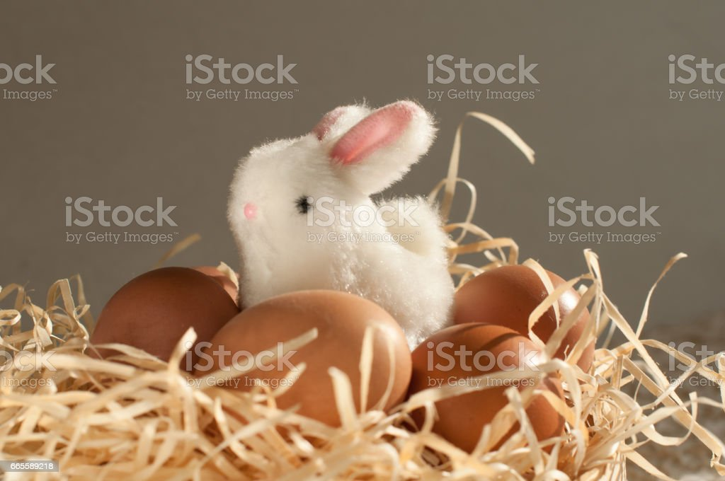 Easter rabbit inside a sieve full of easter eggs on rustic wood stock photo