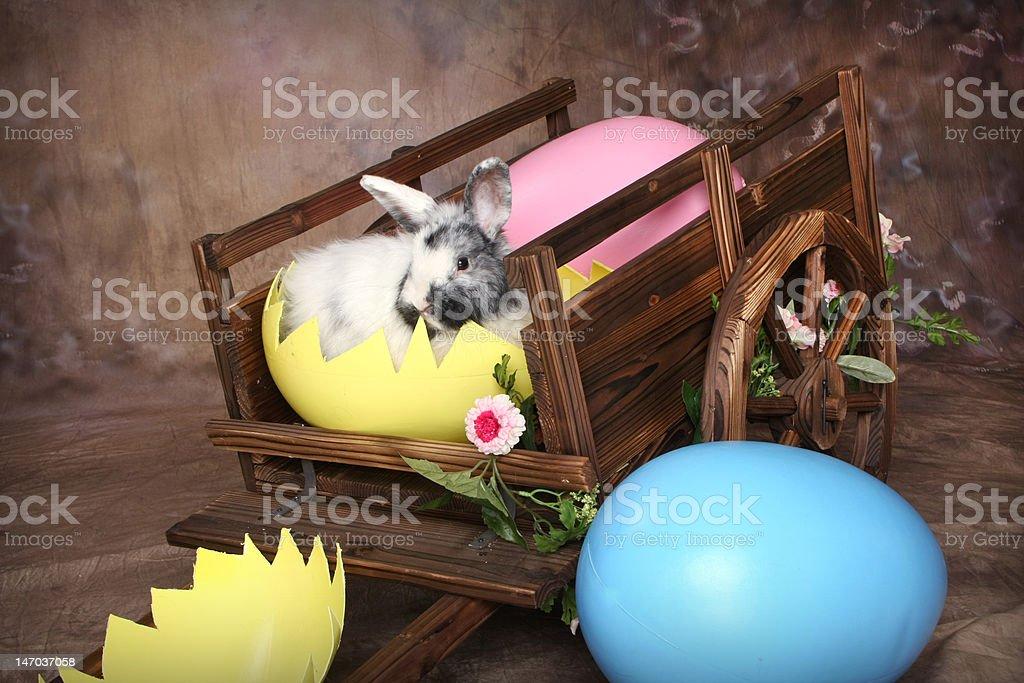 Easter Rabbit Wagon royalty-free stock photo