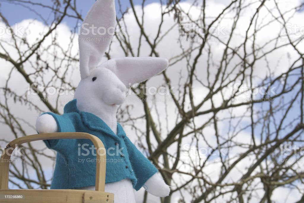 Easter Rabbit with Basket royalty-free stock photo