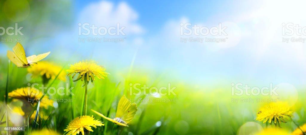 Easter spring flower background; fresh flower on green grass background stock photo