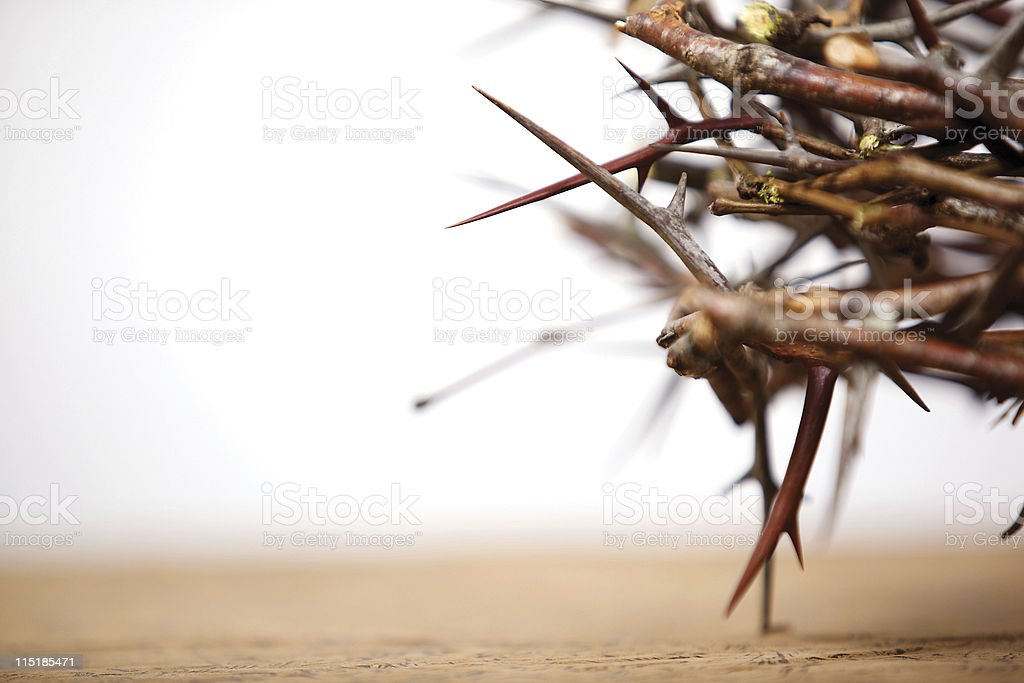 easter thorny crown stock photo