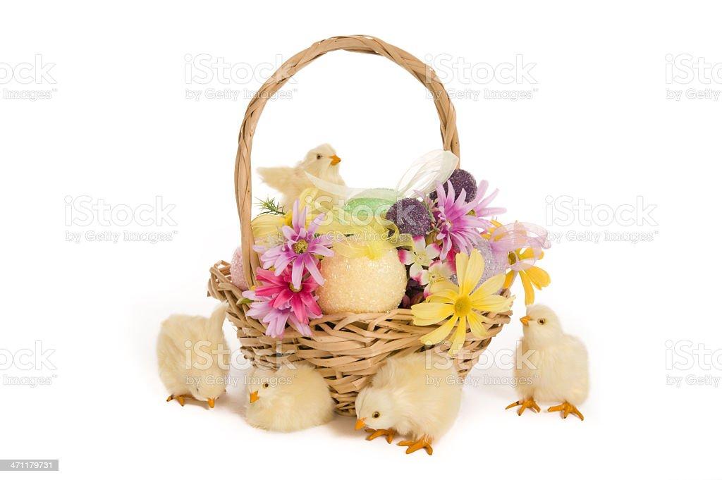EasterChicks royalty-free stock photo