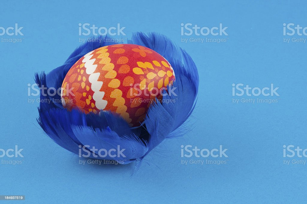 Easteregg in blue feather nest stock photo
