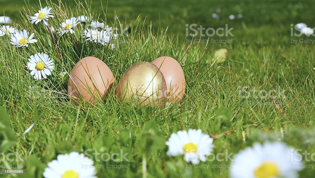 easterl eggs royalty-free stock photo