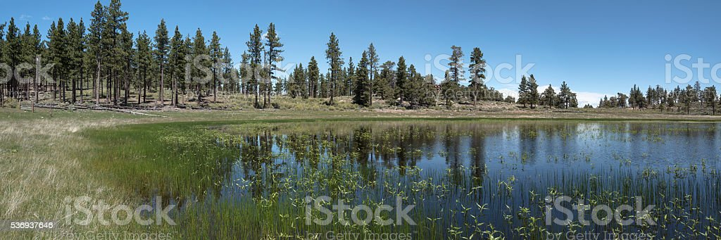 Eastern Sierra Nevada lake panorama stock photo