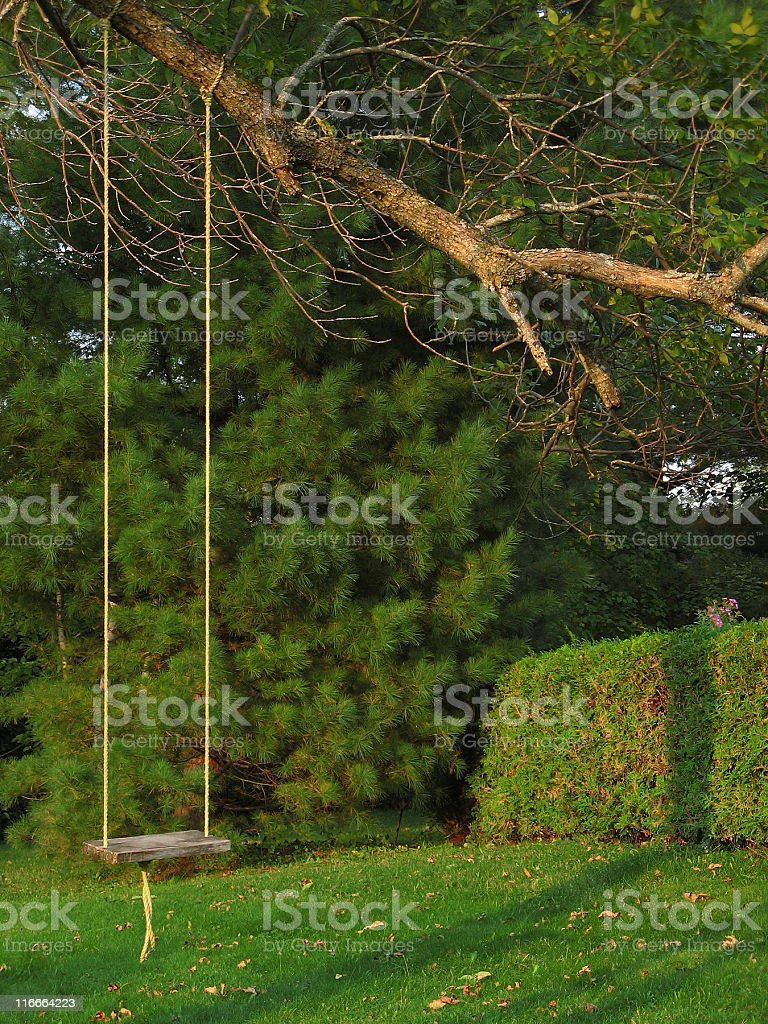 Eastern Townships, Swing on a tree stock photo