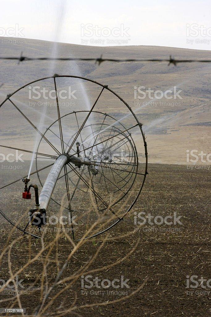 Eastern Washington fields being irrigated stock photo