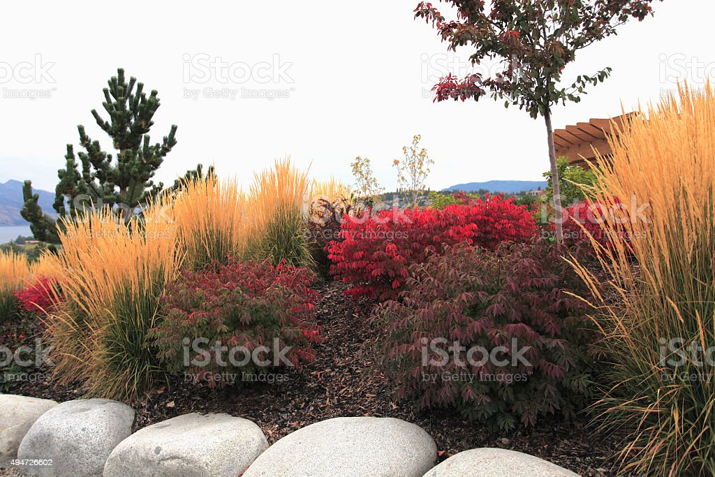 Easy Ideas For A Fall Perennial Garden stock photo