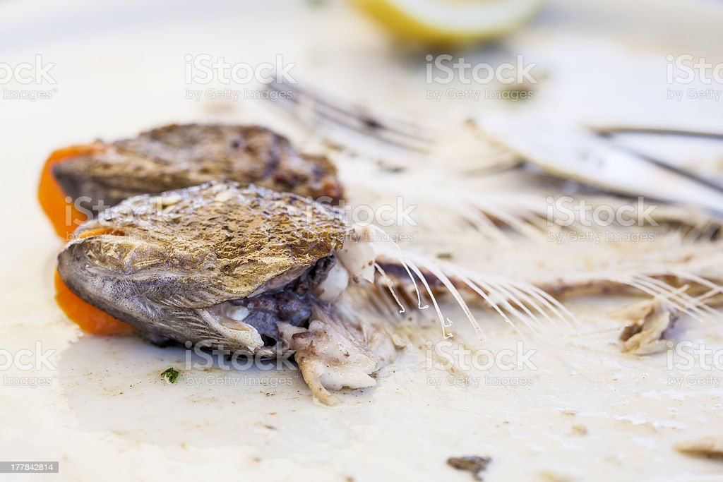 Eaten trout fish with head and bones stock photo