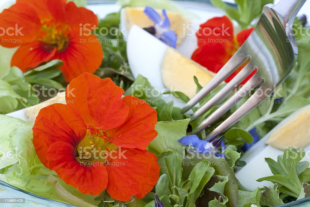 eating a salad stock photo