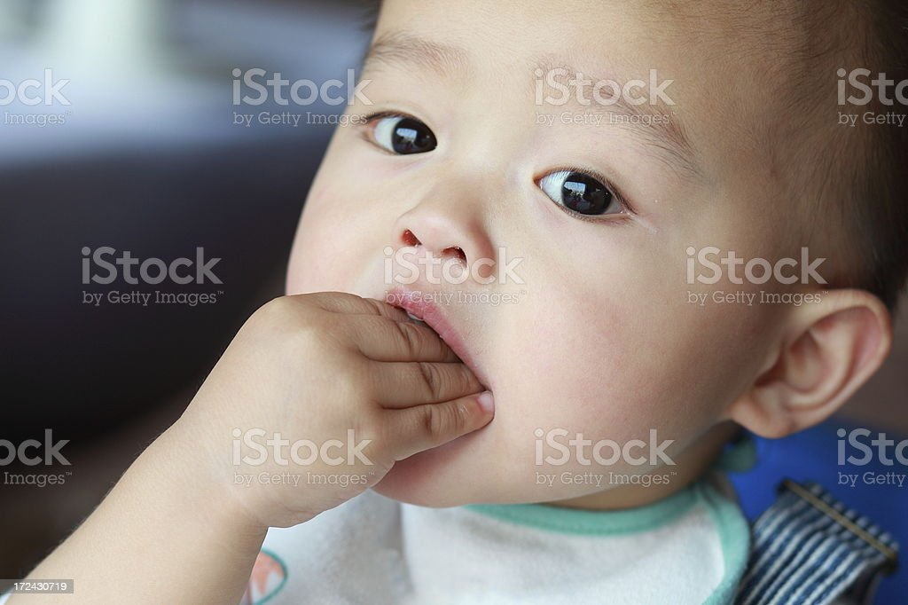 Eating baby boy stock photo