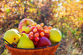 Eating fresh fruits and vegetables basket  the seat rest,