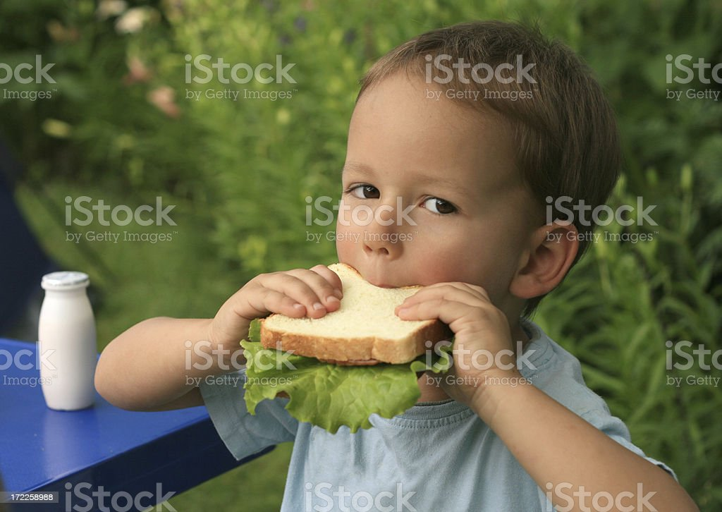Eating healthy sandwich royalty-free stock photo