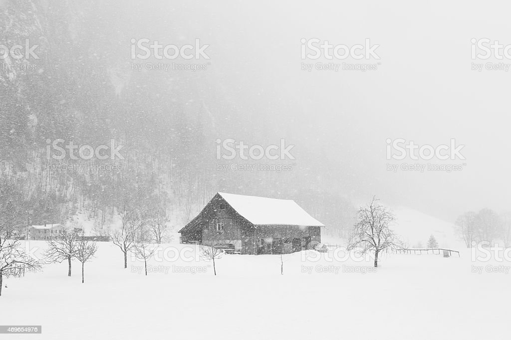 Eaves in the snow stock photo
