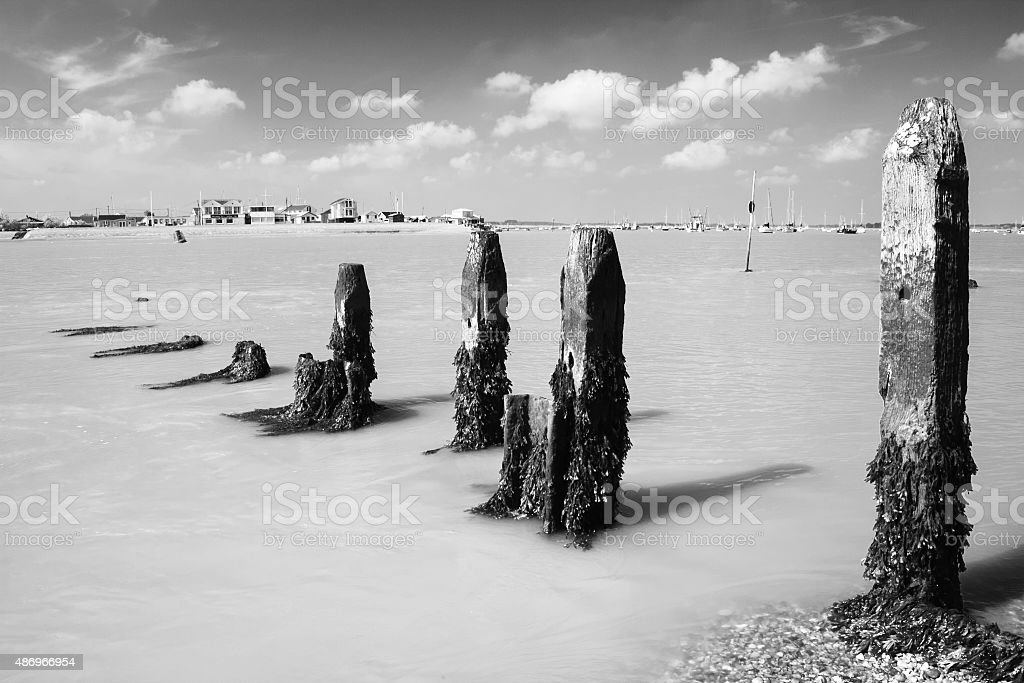 Ebb tide, River Deben at Bawdsey, Suffolk, UK stock photo