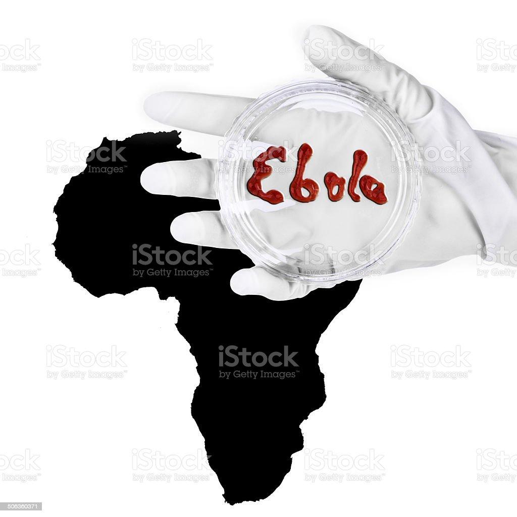Ebola Virus - Petri dish over map of Afrika stock photo