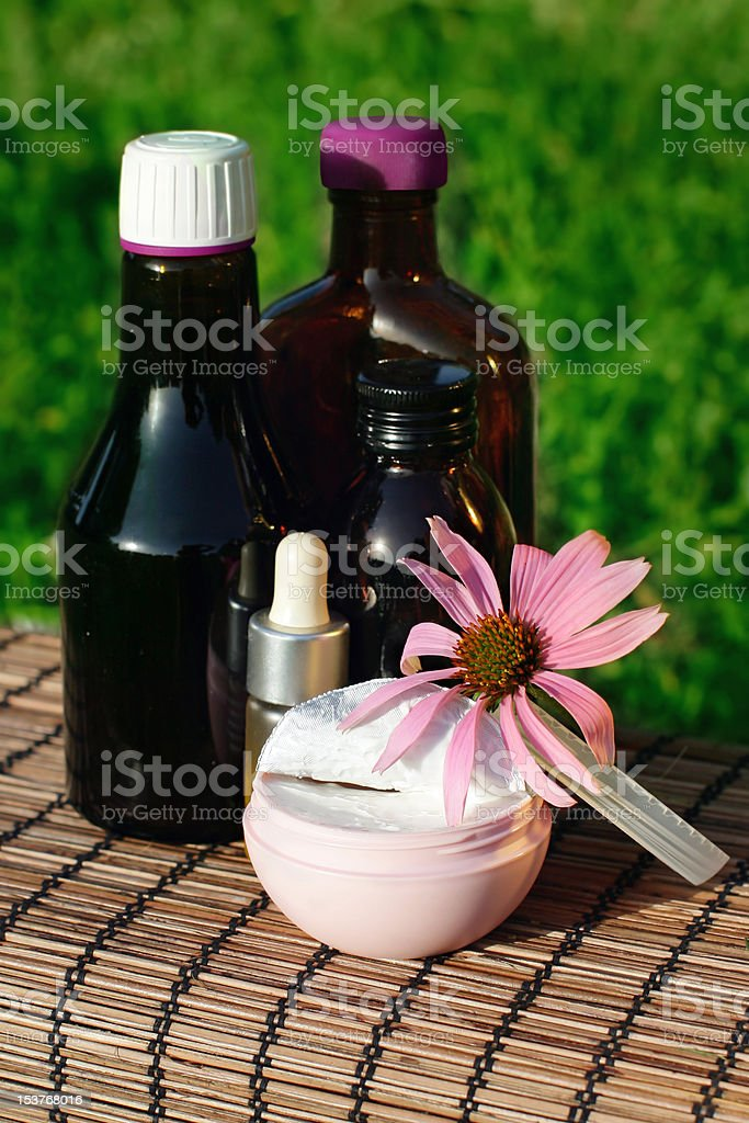 Echinacea alternative medicine royalty-free stock photo