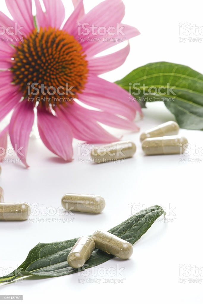 Echinacea capsules royalty-free stock photo