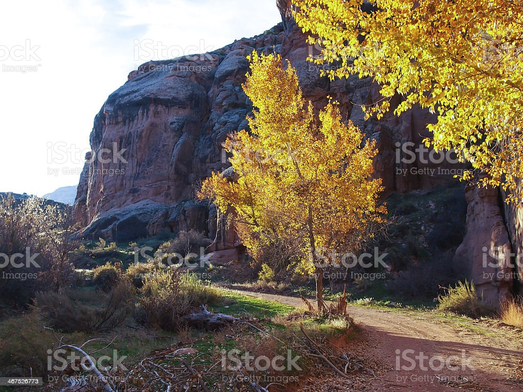 Echo Park Road in Dinosaur National Monument stock photo