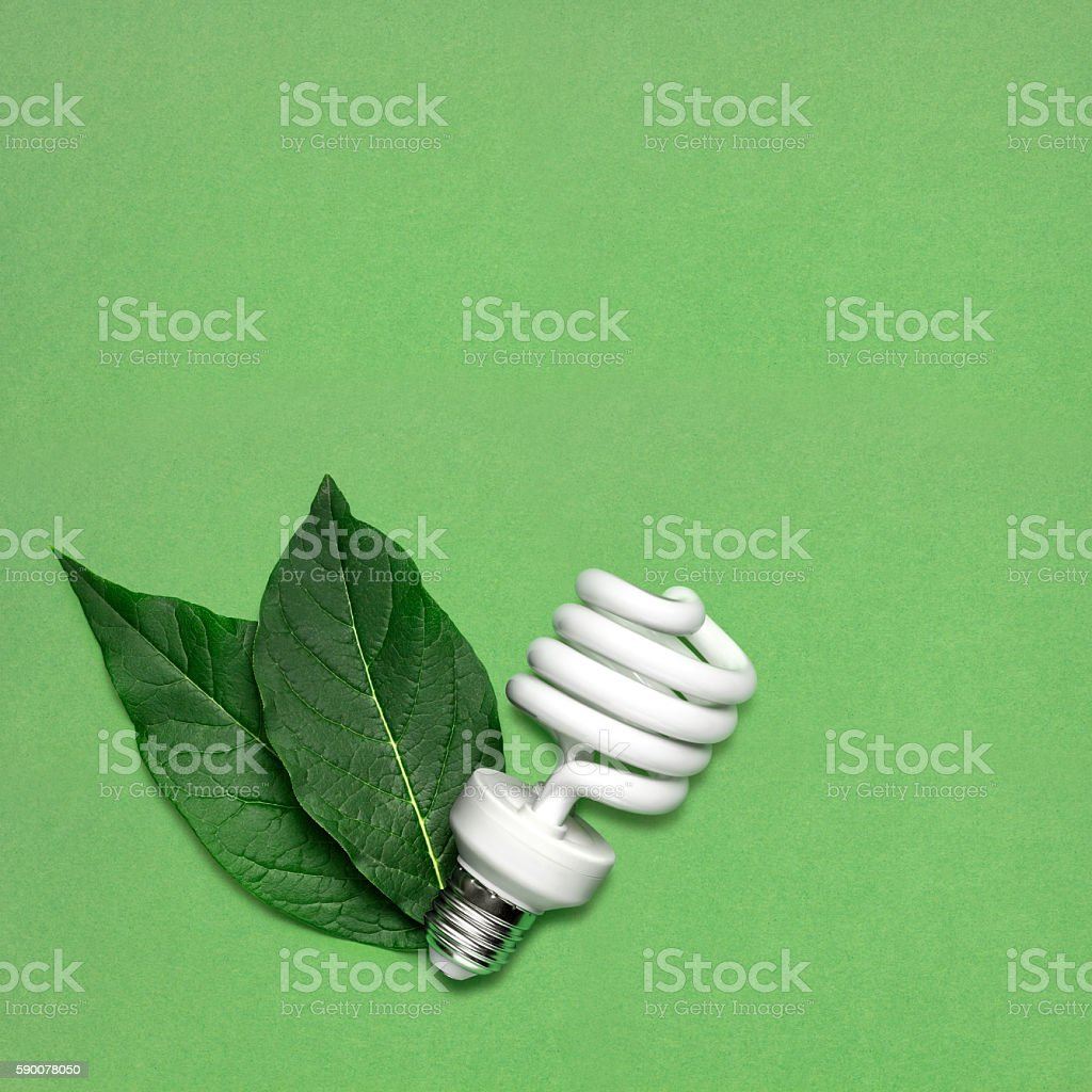 Eco bulb. stock photo