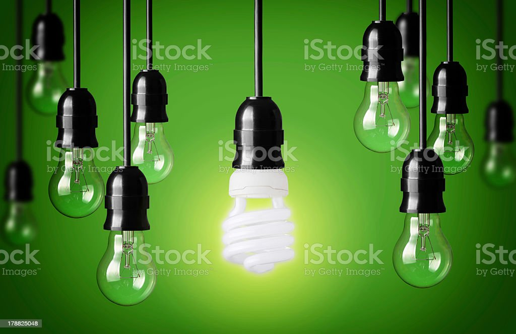 Eco concept with light bulbs on a green background stock photo