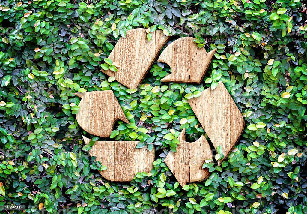 Eco concept :Wood texture Recycle icon on green leaves wall stock photo