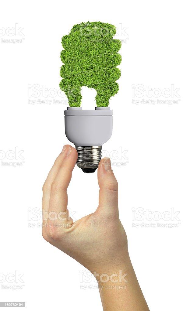 eco energy bulb royalty-free stock photo