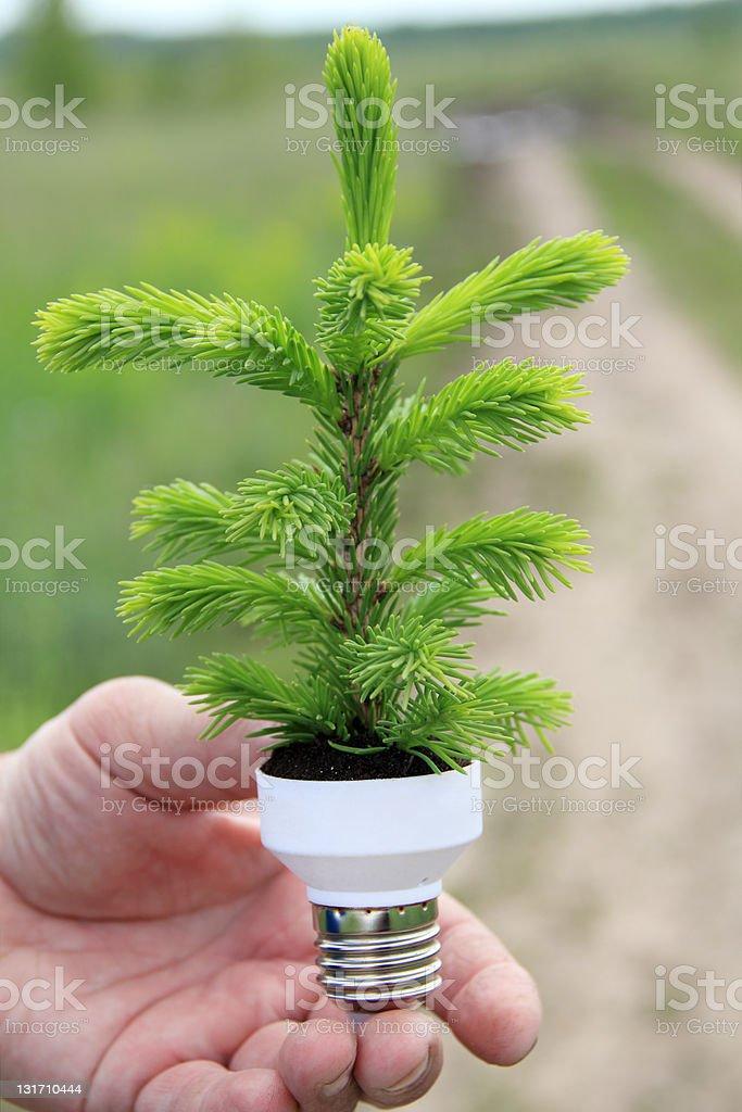 eco energy concept royalty-free stock photo