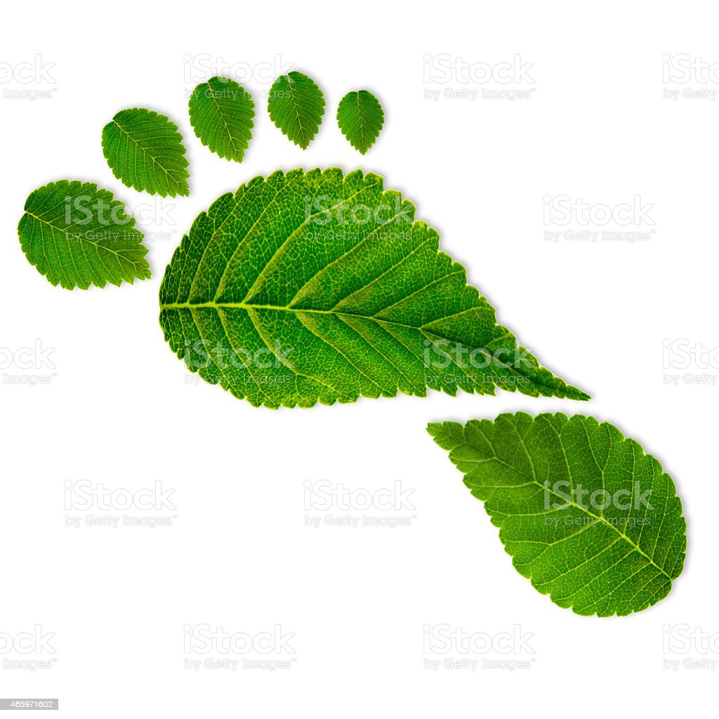 Eco footprint stock photo