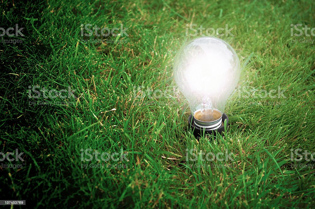 Eco Friendly Energy royalty-free stock photo