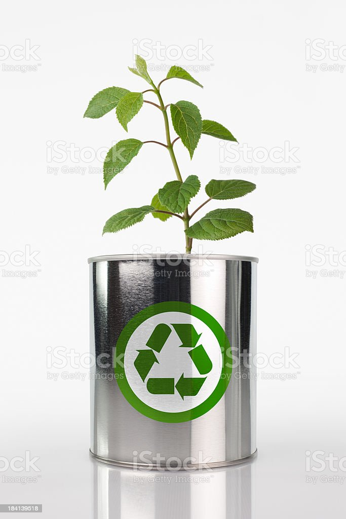 Eco Friendly Recycling royalty-free stock photo