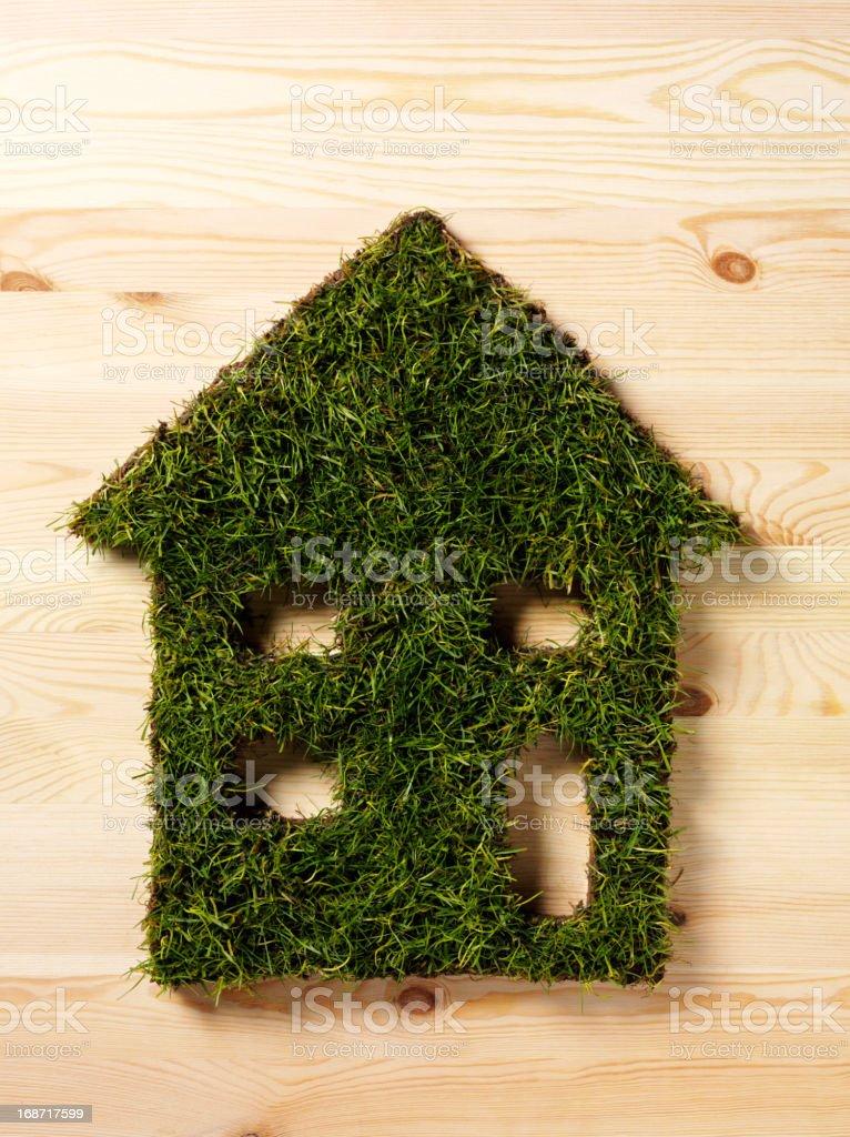 Eco Green House royalty-free stock photo