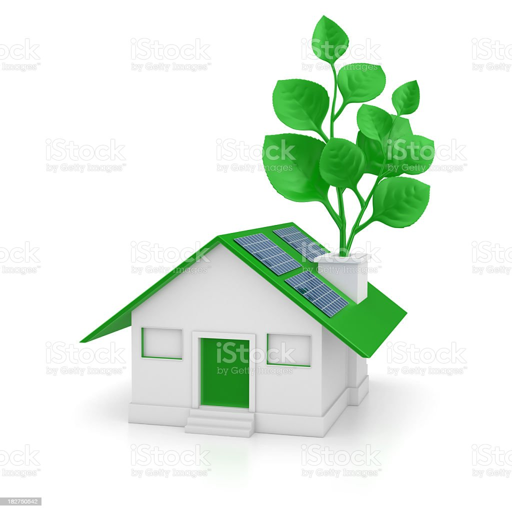 Eco House and Twig royalty-free stock photo