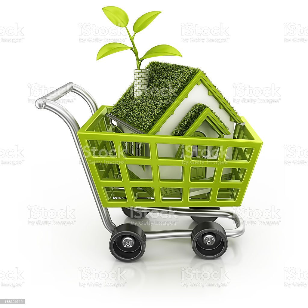 eco house in shopping cart royalty-free stock photo