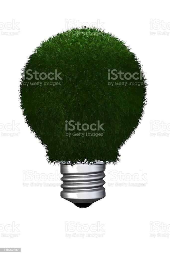 eco light bulb royalty-free stock photo
