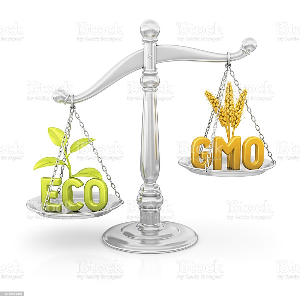 eco vs gmo stock photo
