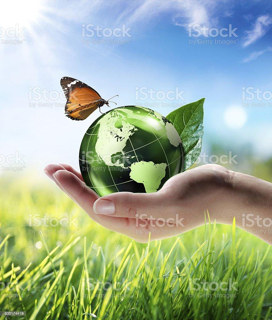 eco-friendly concept stock photo