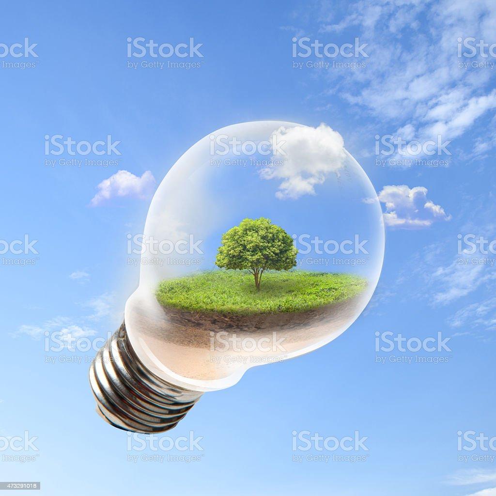 Eco-living stock photo