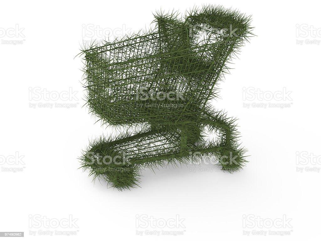 Ecologic shopping cart stock photo
